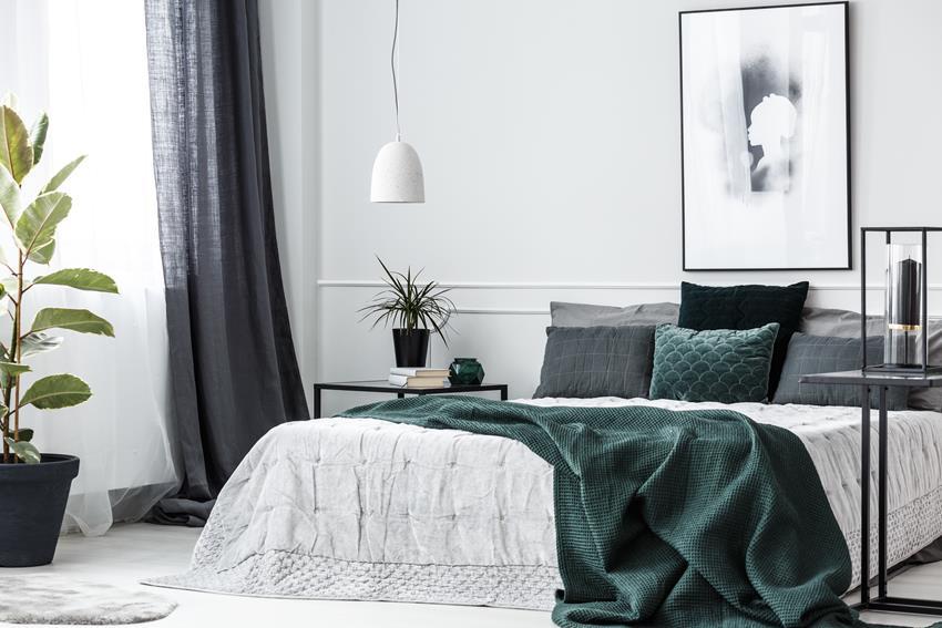 Jakie rośliny do sypialni?